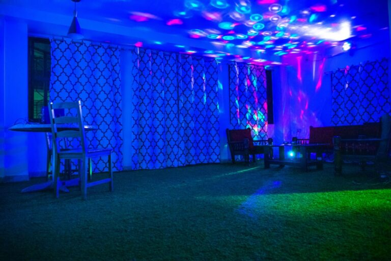 Party Lights for night parties.